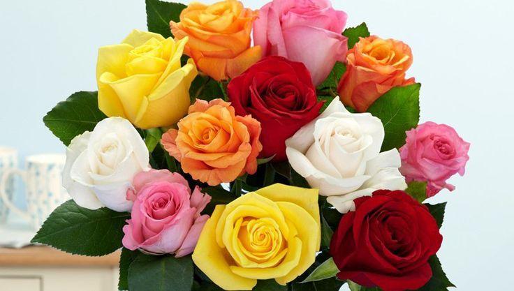 tặng hoa hồng ngày valentine