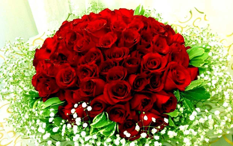 hoa-hong-tinh-yeu-dep-valentine