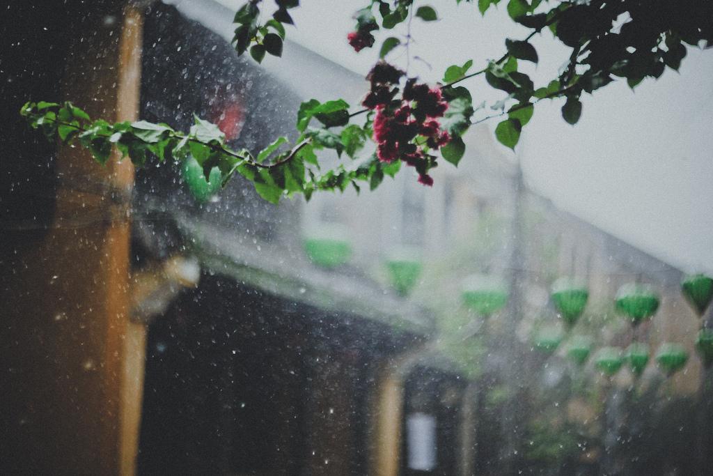 món ăn chiều mưa
