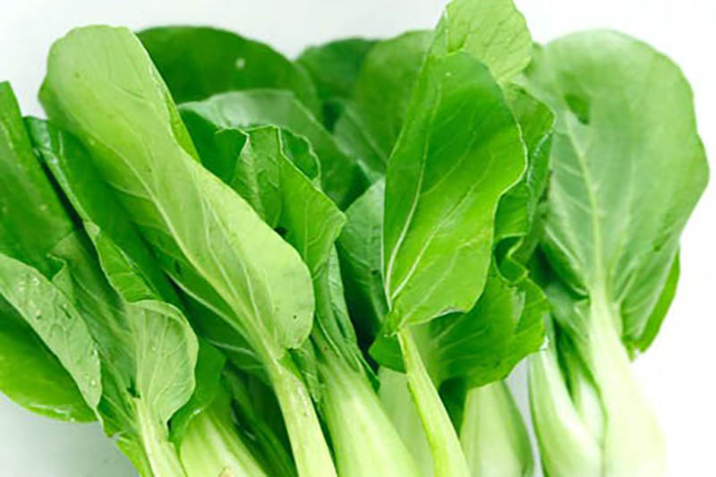 Bí quyết chọn rau xanh an toàn