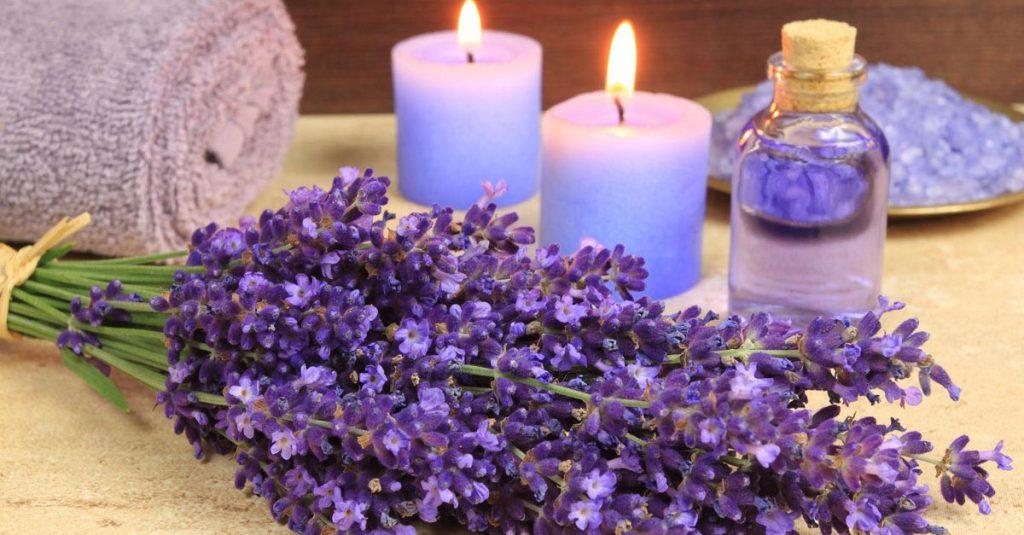 nến và hoa lavender