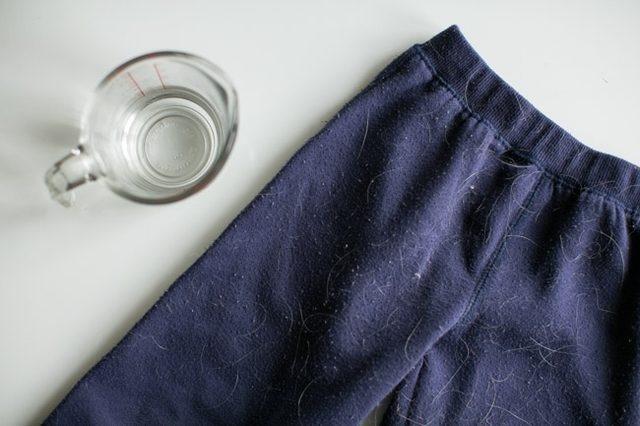 Loại bỏ lông động vật, sợi vải thừa với giấm