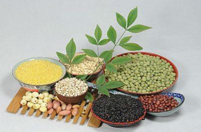 Các loại ngũ cốc giàu dinh dưỡng nhất hiện nay