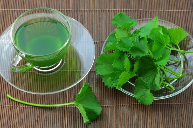 trà giải độc gan