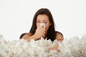 cách trị viêm mũi dị ứng