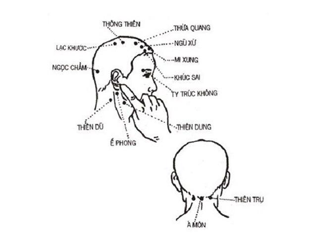gội đầu dưỡng sinh