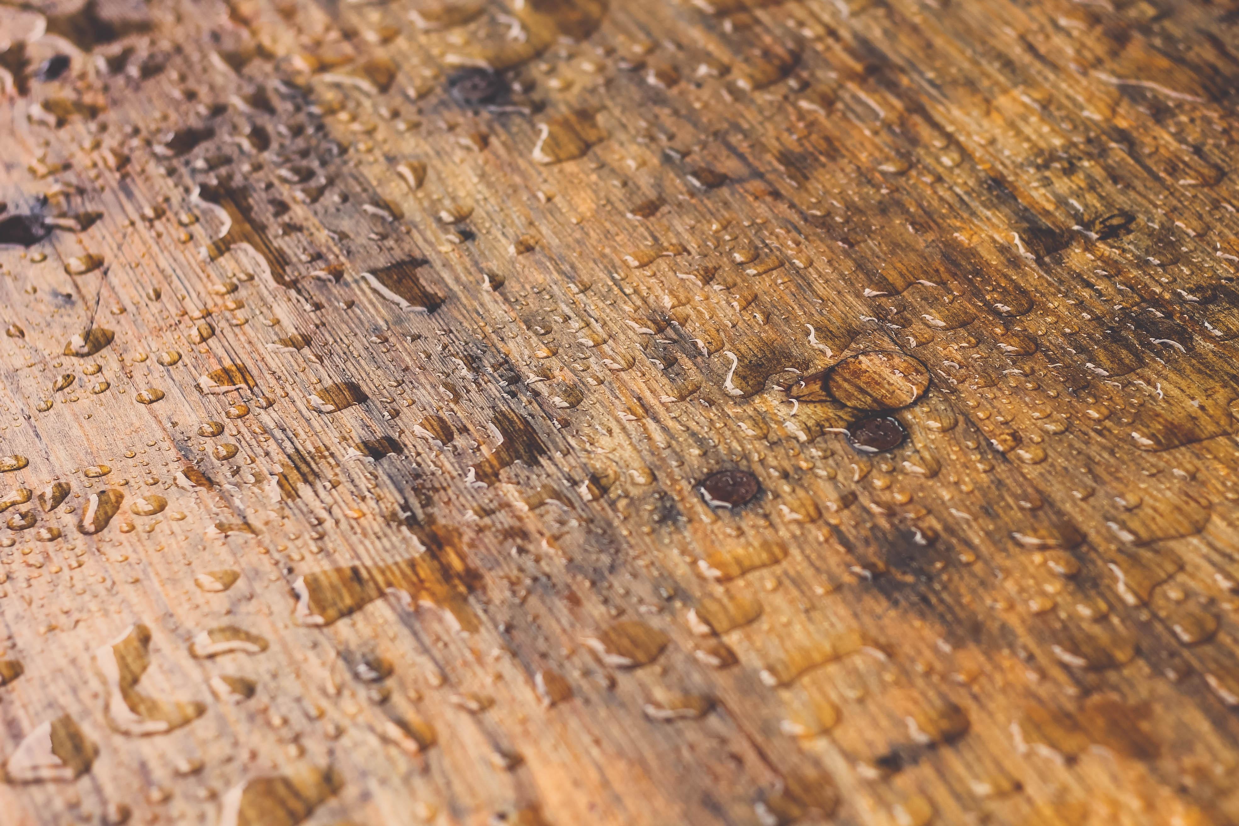Mẹo sơ cứu sàn gỗ