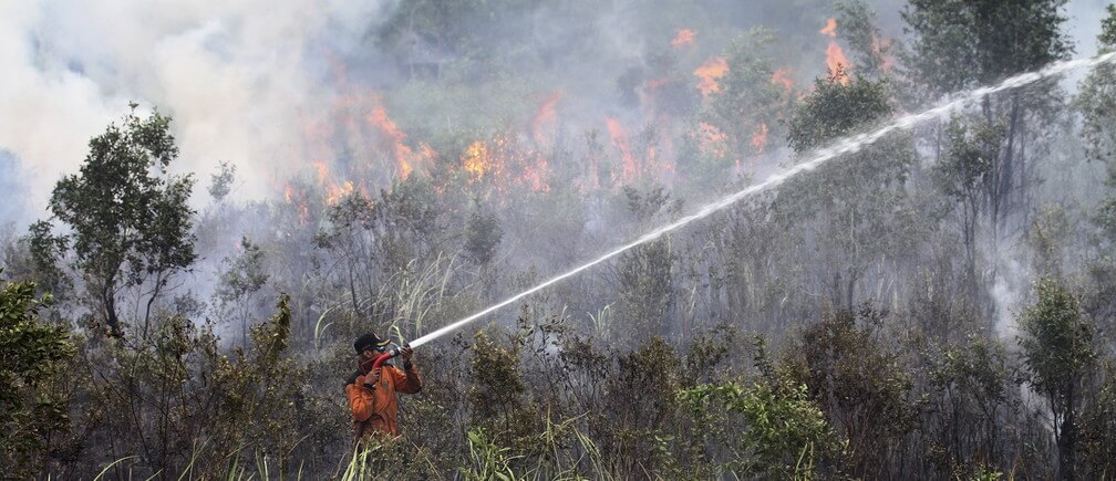 Indonesian forest fires burn