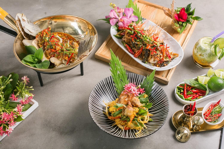Mon-an-o-Mays-Urban-Thai-Dine