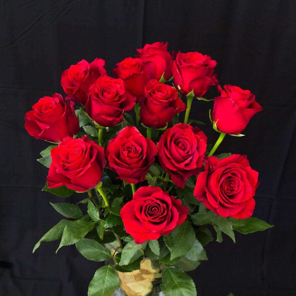 qua-valentine-hoa-hong-rose