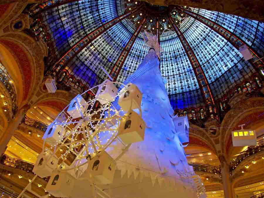 cây thông noel đẹp nhất tại Paris
