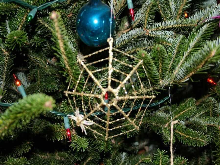 cây thông gắn mạng nhện