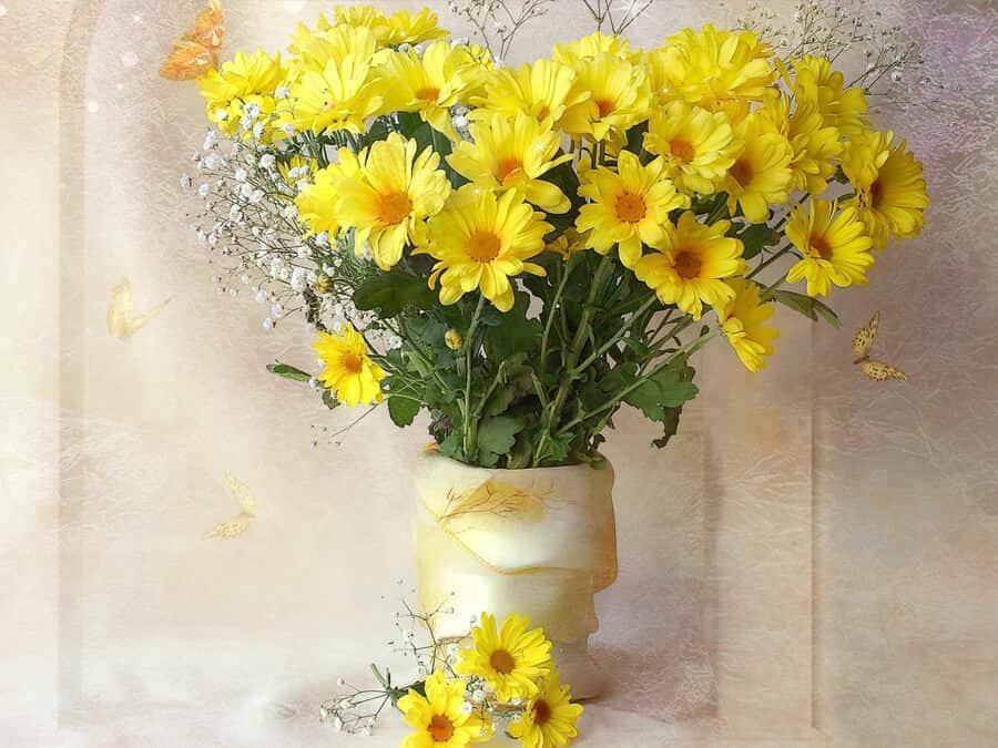 Cắm hoa cúc ngày Tết