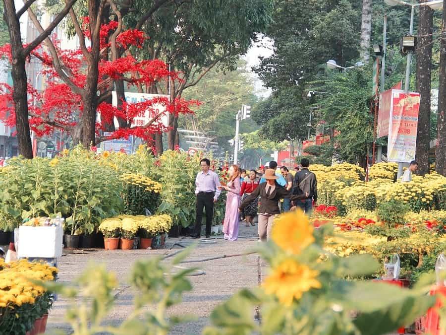 Chợ hoa Tết công viên Gia Định