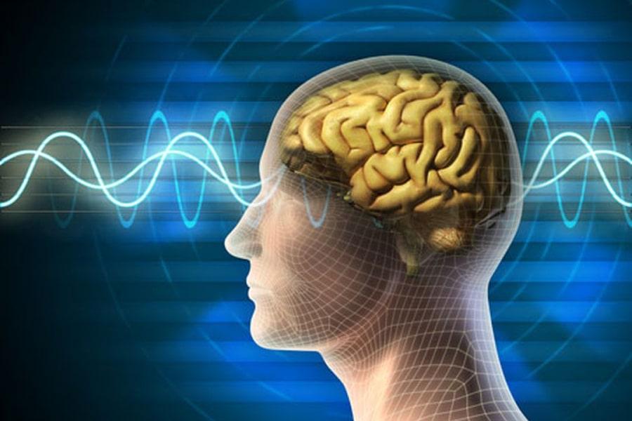 công dụng của đậu phộng giúp tăng cường trí nhớ