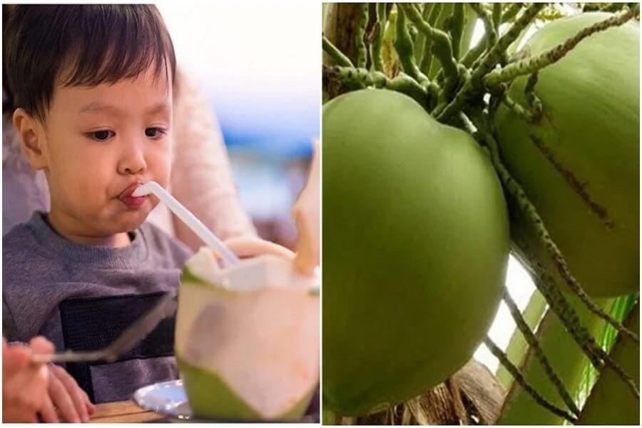 trẻ em uống nước dừa