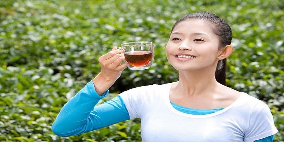 công dụng trà ô long
