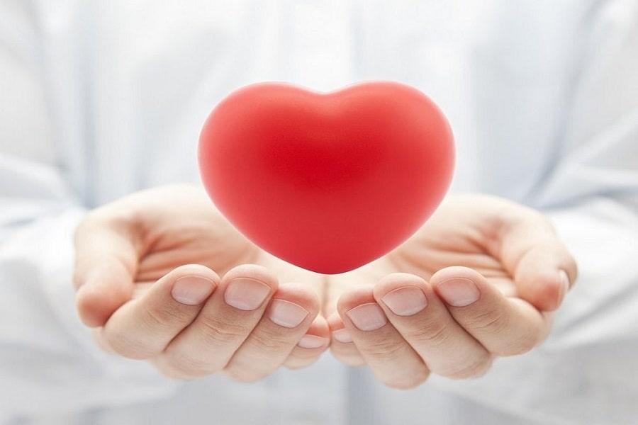 Tác dụng của trà ô long hỗ trợ tim mạch