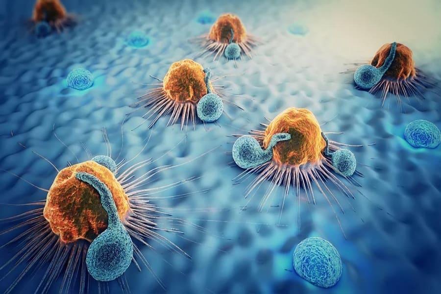 Uống trà ô long thường xuyên giúp ngăn ngừa ung thư